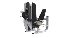Machine de musculation Leg Curl Authentique