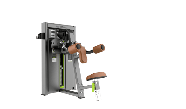 Lateral Raise Serie Warrior Professionnelle Gamme Warrior [tag]