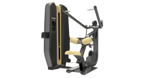 Machine de musculation Lat Machine Authentique