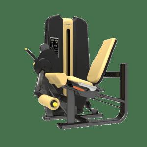 Machine de musculation Leg Extension Authentique