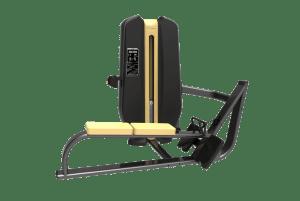 Machine de musculation Pulley Authentique